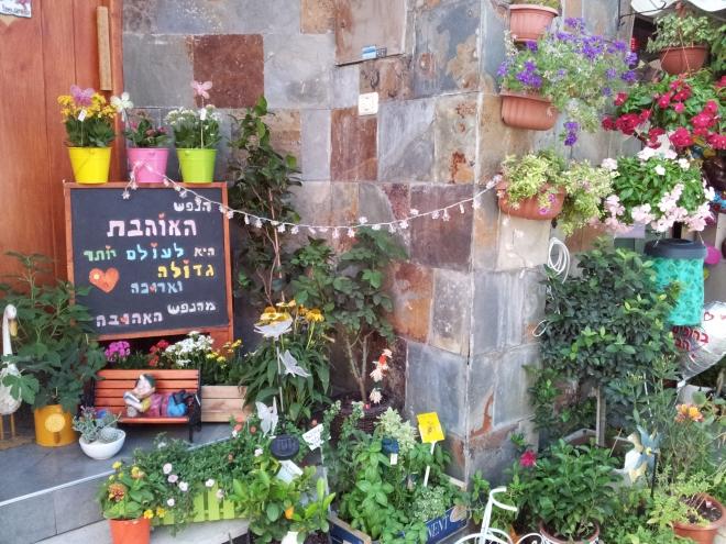 gardening_in_neve_tzedek_1